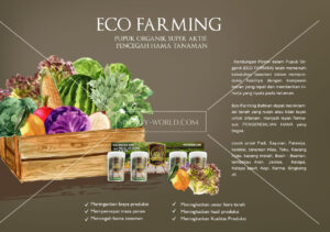 Read more about the article Eco Farming Nutrisi Tanaman