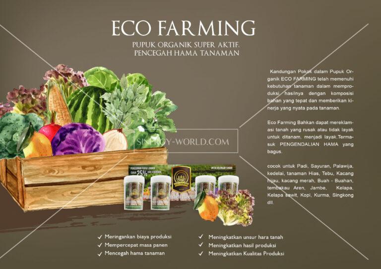 Read more about the article Eco Farming Pupuk Organik Paling Dahsyat